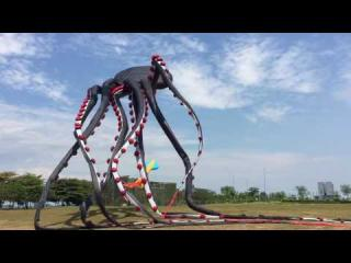 Giant Octopus Kite (720p HD)