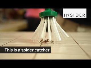 This is a spider catcher