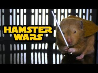 Hamster Wars - ''Star Wars'' with Hamsters