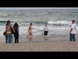 Man seen pulling shark from ocean on Palm Beach, Florida